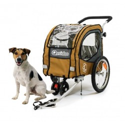 Qeridoo Petsmall dog bike trailer