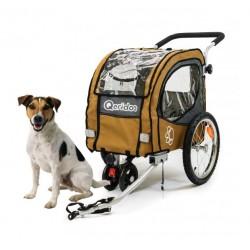 Qeridoo Petsmall remorque vélo chien
