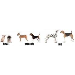 Doggyride Novel10 hondenfietskar
