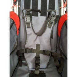 Kidscab handicap harness