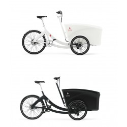 Triobike Boxter child cargo bike
