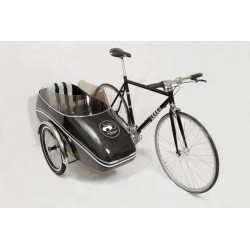 Scandinavian sidecar bike Carbon