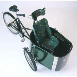 Vélo cargo Nihola Rehab pour handicapés électriques