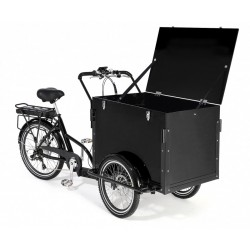 KidsCab Cargobox cargo trike Electric