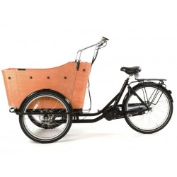 Child transport trike Cangoo Scoobi Electric