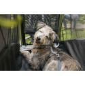 Croozer puppybescherming Dog L